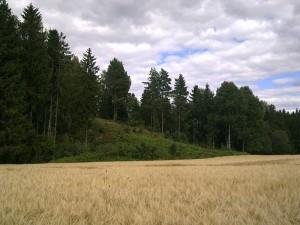 Høyden hvor det norske artilleriet var plassert. Foto: Otebig, Wikimedia Commons