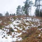Skansen sett fra NØ. Foto: Svein Norheim